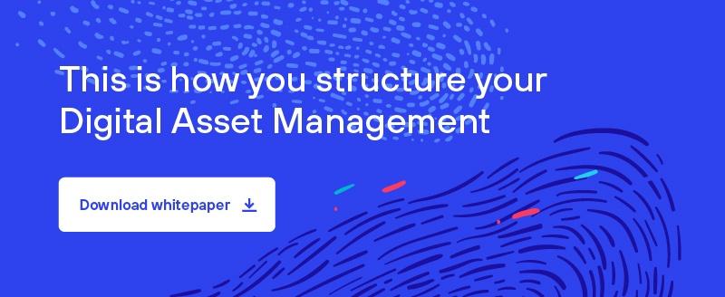 structure your digital asset management