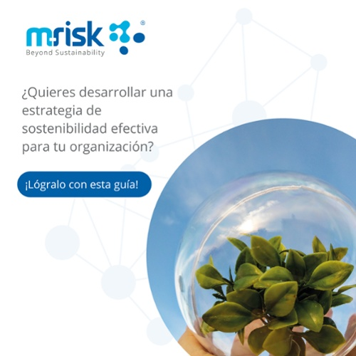 ¡Descarga esta guía para lograr un estrategia de sostenibilidad efectiva!
