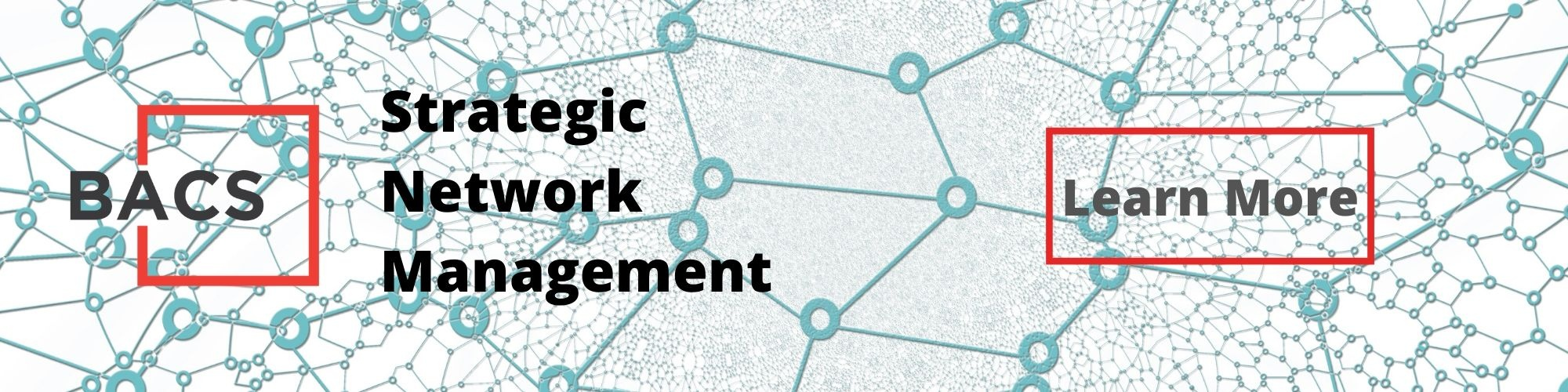 Strategic Network Management