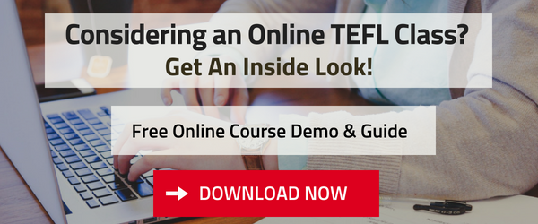 Download a Free Guide & Demo for Online TEFL Certification