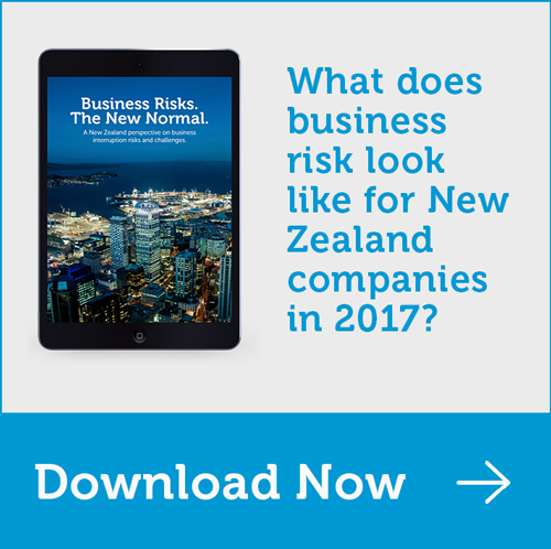 What does business risk look like for NZ companies in 2017? Find out in our eBook here.
