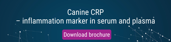 Canine CRP inflammation marker in plasma and serum