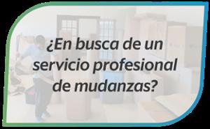 En busca de un servicio profesional de mudanzas