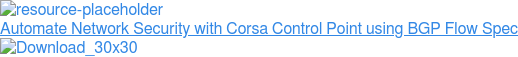 Corsa NSE7000 Demo BGP Flow Spec Support