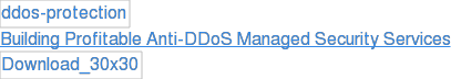 Building Profitable Anti-DDoS Managed Security Services