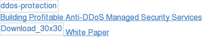 Building Profitable Anti-DDoS Managed Security Services  White Paper