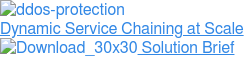 Dynamic Service Chaining at Scale  Solution Brief