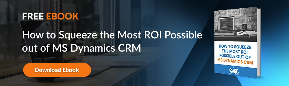 How to Squeeze The Most ROI Possible Out of MS Dynamics CRM