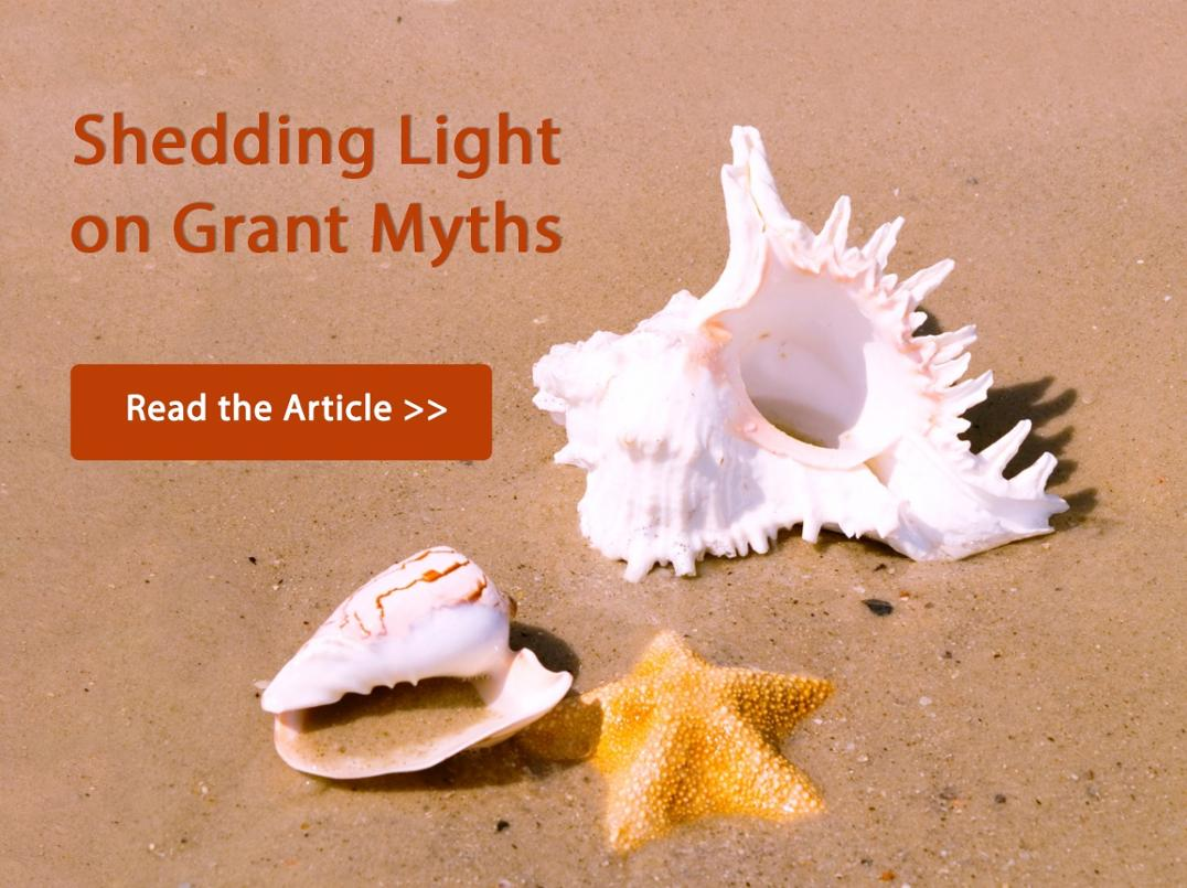 Grant Myths Debunked Article - Seashells Image