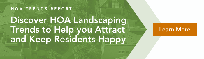 Read our HOA Landscaping Trends Report