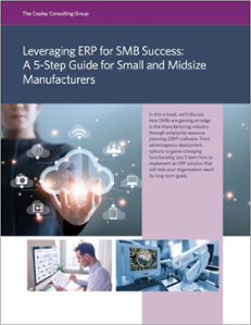 Leveraging ERP for SMB E-Book