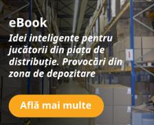 http://info.bitsoftware.eu/ebook-idei-distributie-depozite