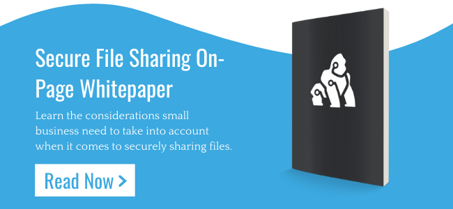 Secure File Sharing On-page Whitepaper