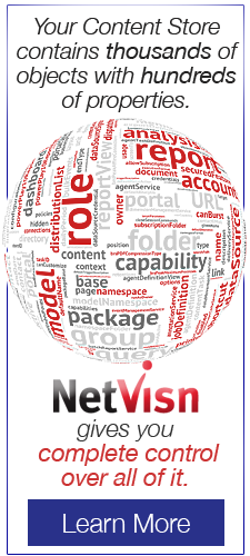 Your Content Store contains thousands of objects with hundreds of properties. netvisn gives you control of all of it learn more