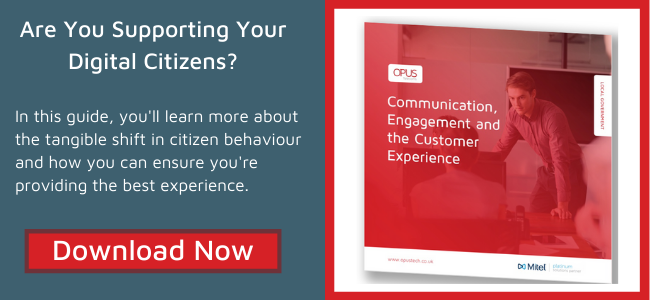 Download the Local Government citizen experience guide today