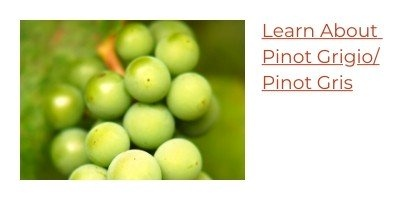 Learn About Pinot Grigio and Pinot Gris Wine