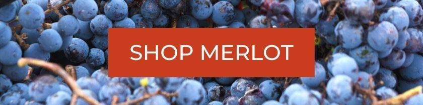 Shop Merlot Wines