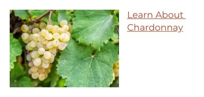 Learn About Chardonnay Wine