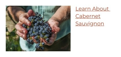 Learn About Cabernet Sauvignon Wine