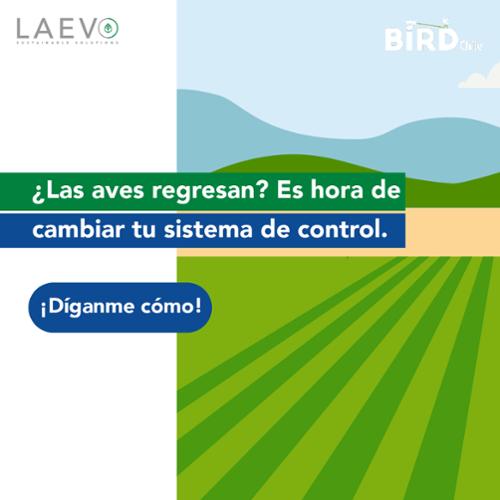 ¿Las aves regresan? Es hora de cambiar tu sistema de control.