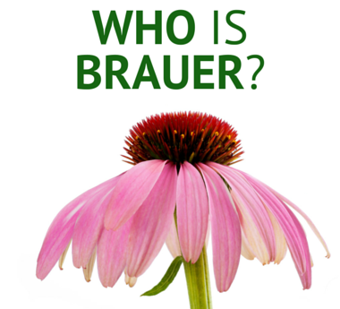 Learn more about Brauer and How they can help you