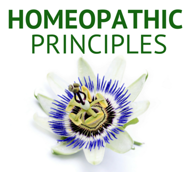 Learn more about Brauer and their Homeopathic principles