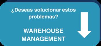 Warehouse Management, gestión de almacen, control de stock, rotura de stock, neteris, stepforward, soluciones tecnológicas