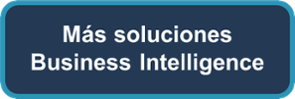 busines intelligence, inteligencia empresarial, oracle bi, analisis de datos, soluciones tecnologicas, neteris