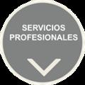 sector servicos profesionales, soluciones tecnologicas, neteris