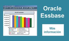 oracle essbase, analytics, analisis de datos, business intelligence, neteris