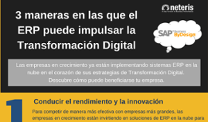 erp cloud, transformacion digital, digitalizacion, neteris