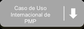 PMP project management