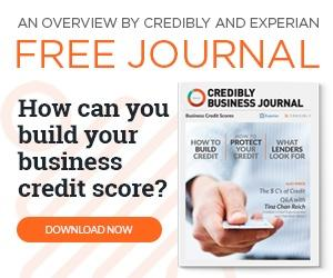 Learn all about Business Credit in this free journal!
