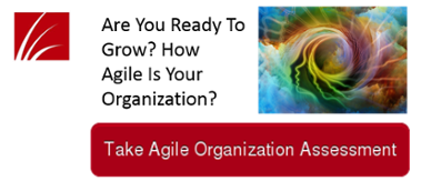 agile organization assessment
