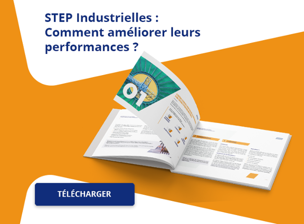 Télécharger l'Ebook STEP Industrielles