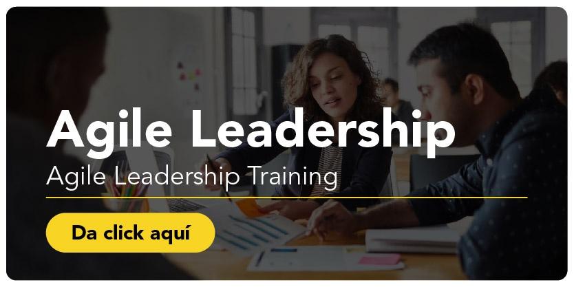 Agile Leadership Training