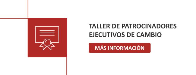 Taller Patrocinadores Ejecutivos de cambio