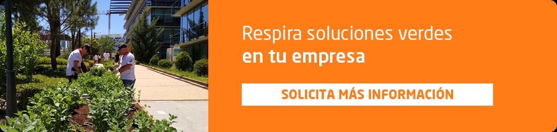 informacion sobre soluciones verdes para empresas