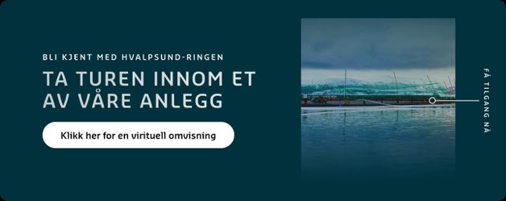 Bli bedre kjent med Hvalpsund-ringen og ta turen innom et av våre anlegg!