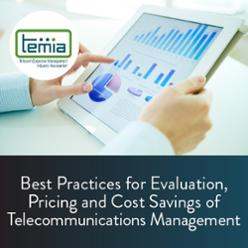 Best Practices for Evaluation, Pricing and Cost Savings of TEM