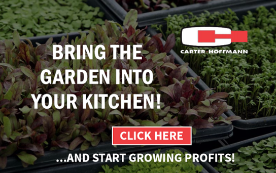 carter hoffman growing cabinets