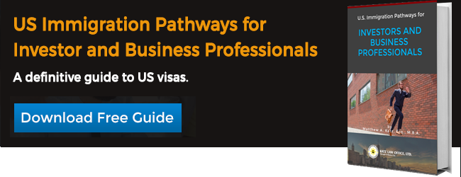 US Immigration Pathways for Investors and Business Professionals eBook