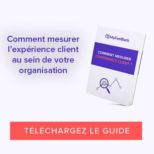 télécharger guide expérience client