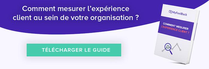 telecharger le guide comment mesurer l'experience client