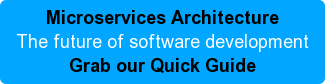 Microservice Architecture The future of software development Grab our Quick Guide