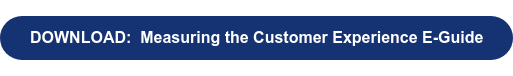 DOWNLOAD:  Measuring the Customer Experience E-Guide