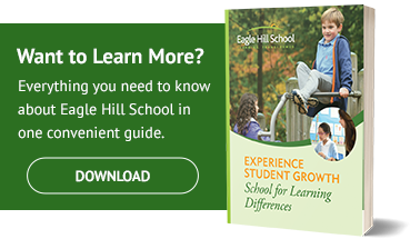 Download Eagle Hill School Guide