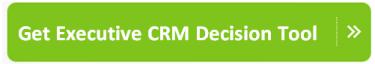 Executive CRM Decision Tool