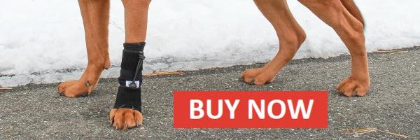Buy Front No-Knuckling Training Sock