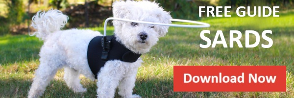 Download Guide SARDs in Dogs